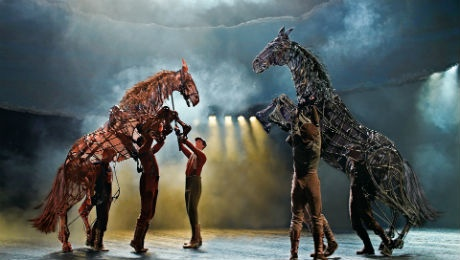 The magnificent War Horse all set to charge into Liverpool